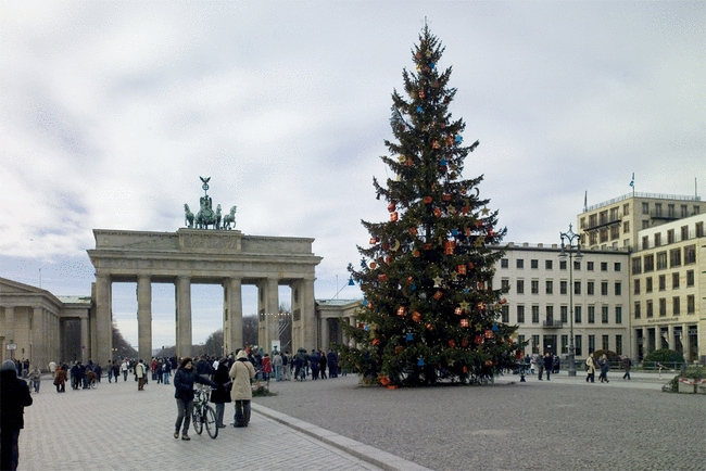 foto der pariser platz mit weihnachtsbaum deutschland berlin. Black Bedroom Furniture Sets. Home Design Ideas